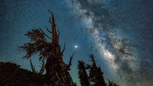 How to find the Milky Way | Photofocus
