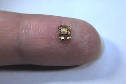 Tiny sensor monitors organ oxygenation deep inside the body – Physics World