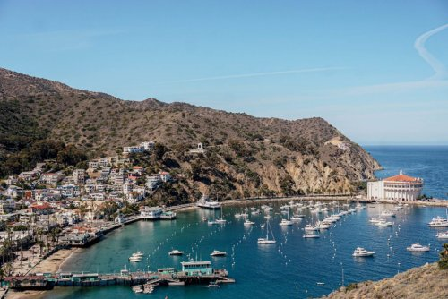 14 Incredible Things to Do on Catalina Island: Southern California's Island Paradise | Catalina Island Travel Guide | Southern California Weekend Getaways | Los Angeles Day Trips | California Travel Tips | Weekend Getaways in California | USA Island Getaways | Southern California Vacations | Day Trips from Los Angeles