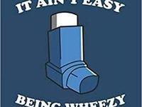 390 1,000 Asthma Remedies ideas | asthma remedies, asthma, salt inhaler
