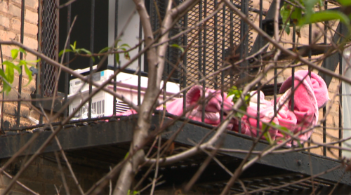 Brooklyn mom throws 2 young children out apartment window before jumping: NYPD