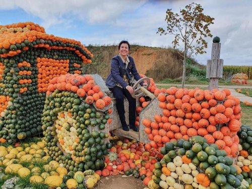 Krewelshof Eifel: Der perfekte Herbstausflug zur größten Kürbisausstellung in NRW