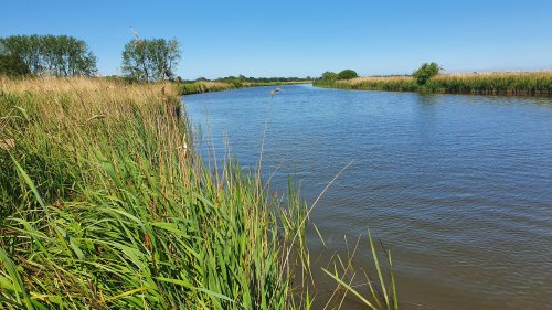 #GetWaterWise: Extra care needed when swimming in East Anglia