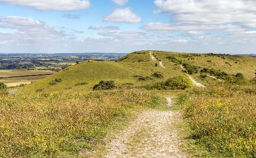 Plans to extend protections around the Chilterns