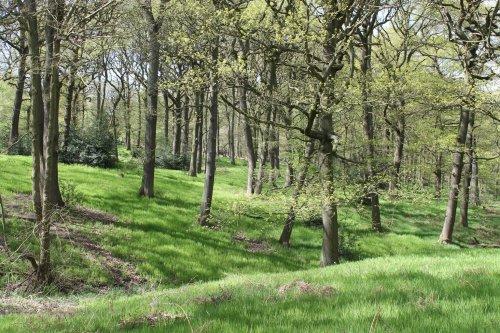 £600k for environmental projects across Warwickshire