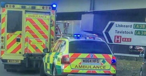 Police praise hero strangers who saved young man on bridge
