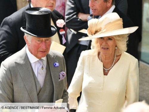 Charles et Camilla : leur supposé fils illégitime dévoile de nouvelles preuves
