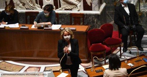 Le Parlement adopte définitivement la loi climat, très critiquée par les ONG