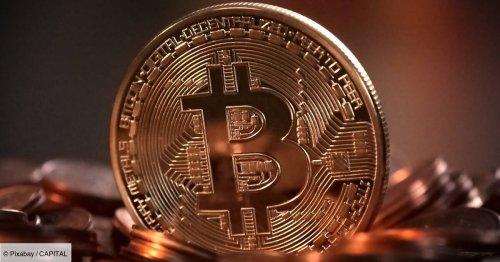 """Une victime de l'arnaque au bitcoin """"Elon Musk"""" perd plus de 10.000 euros"""
