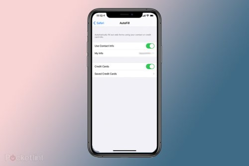 How to see and delete saved credit cards from Autofill on iPhone