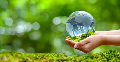 Un viaje a la solución del cambio climático | La redada