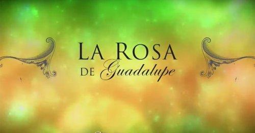 La Rosa de Guadalupe, la telenovela interminable que triunfa en internet | La redada | Temporada 09 | Podium Podcast