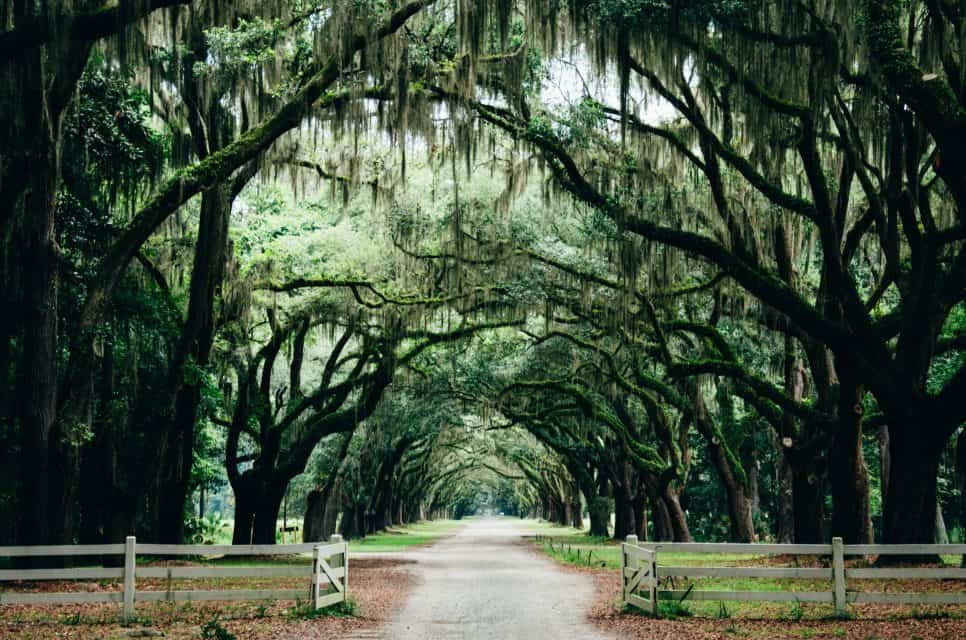 Savannah GA: Guide to the Best Things To Do