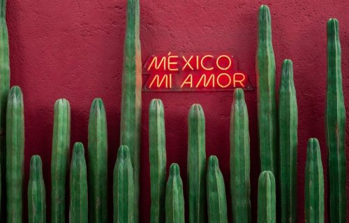 Where To Stay in Mexico City: The Best Neighborhoods and Hotels!
