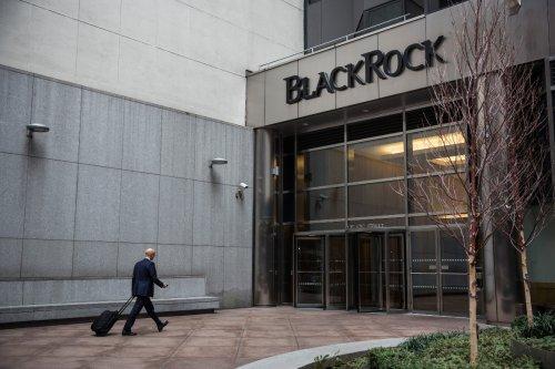 BlackRock barges into corporate boardrooms