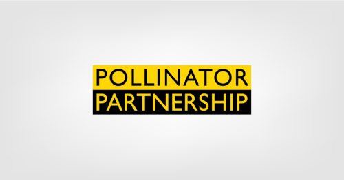 What Should I Plant? Try These Printable Guides From Pollinator.org