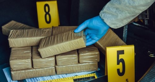 Actor Accused of Being Cocaine Operation's Mastermind
