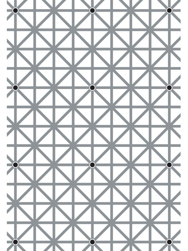 Your brain won't let you see all 12 dots in this image