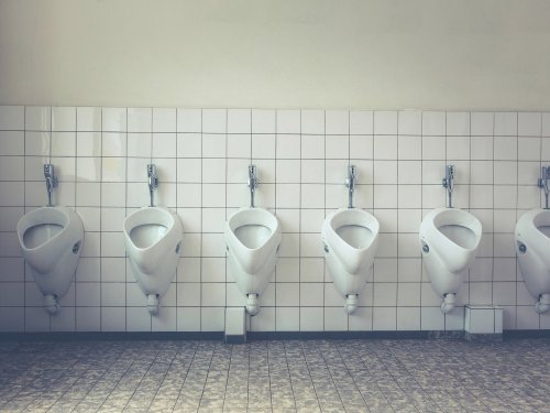 Your pee could be the golden ticket to a greener world
