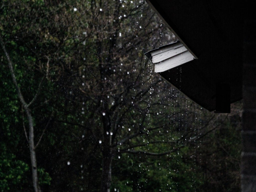 Capturing rainwater is an easy way to save money and the planet