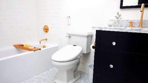 The best bidet: Talk about a toilet upgrade