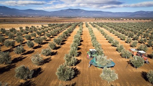 Önümüzdeki 50 yılda tarım nasıl değişecek?