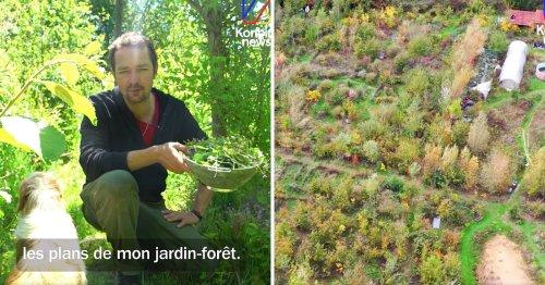 VIDÉO. Dans son « jardin forêt », cet homme cultive mille espèces alimentaires