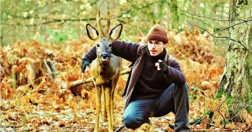 VIDÉO. Après 10 ans dans la forêt, Geoffroy Delorme est devenu « l'homme-chevreuil »