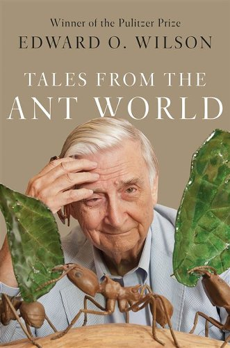 'Tales from the Ant World' is a fascinating journey