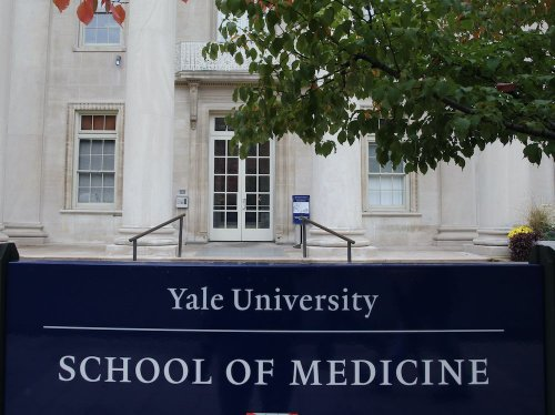 Rex Murphy: Why did Yale host a lecture called 'The Psychopathic Problem of the White Mind'?