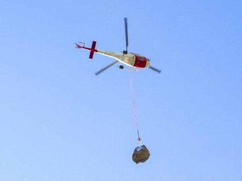 Dino News and Views: Dinosaur Airlift