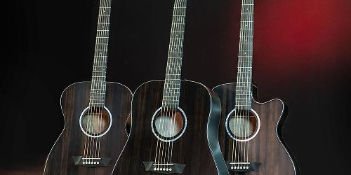 Washburn Launches the Deep Forest Series