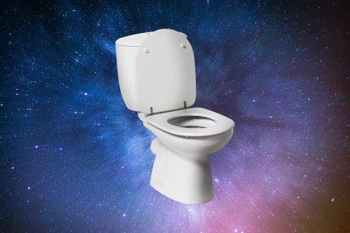Elon Musk confirme que les WC de l'espace sont un enfer pour les touristes
