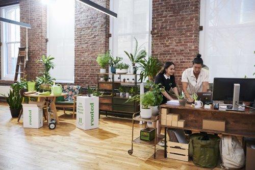 Fiverr : la plateforme des freelances qui facilite la vie des entreprises