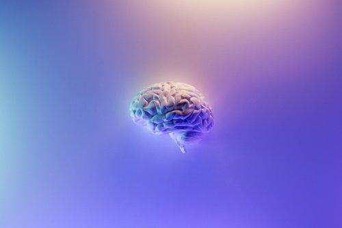 Cette startup dit être « le Google Maps du cerveau »
