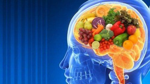 Les 11 meilleurs aliments pour stimuler votre cerveau et votre mémoire