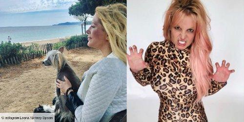 """Instagram : Loana tournée """"vers le futur"""", Britney Spears en habit de panthère... (PHOTOS)"""