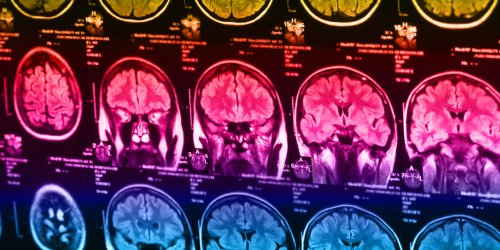 Faith and gray matter: New study finds no relationship between brain structure and religiosity