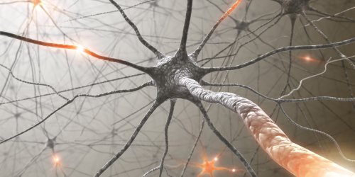 DMT, active component in ayahuasca, aids in the growth of new neurons