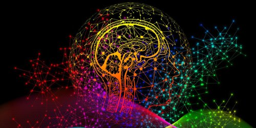 New study sheds light on how LSD's entropic effects on the brain impact language production