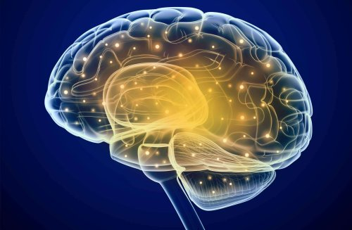 New study sheds light on neural representations of romantic love and the impact of conflict mediation