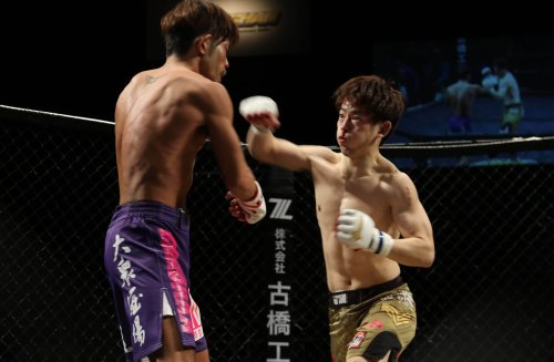 Evidence from mixed martial arts suggests male arm length could be an evolutionary adaptation