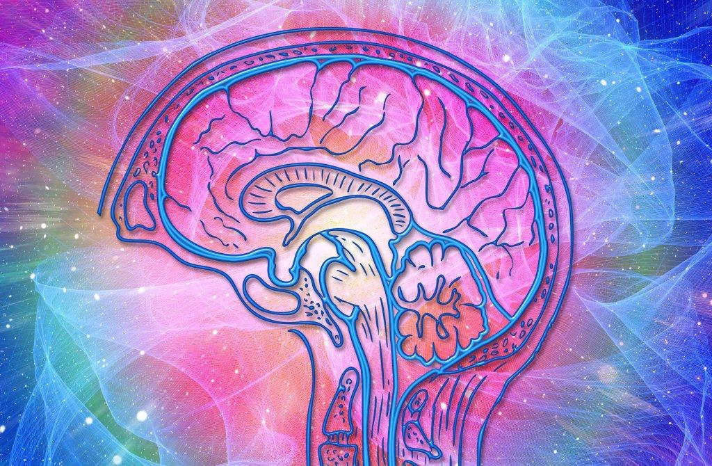 Traumatic Brain Injury: Concussion - cover