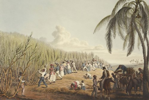 Perspective: The Vocabulary Of Slavery