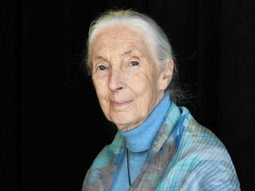 As Jane Goodall grieves climate change, she finds hope in young people's advocacy