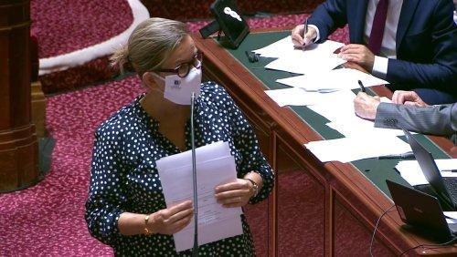 Loi climat : le Sénat interdit les publicités pour les produits polluants dans l'audiovisuel public dès 2023
