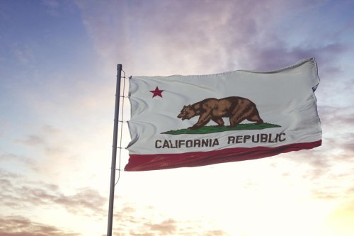 Op-Ed: The Left Dumped Millions, The Right Was Busy Infighting, Californians Lost