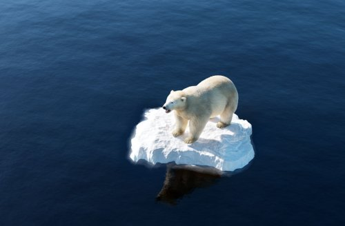 Op-Ed: The Hoax of Man Made Global Climate Change