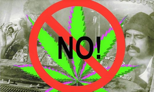 """Op-Ed: A Warning of the Real Danger of Marijuana; My Own Story Of The Major Mental Health Consequences Known As """"Amotivational Syndrome"""""""
