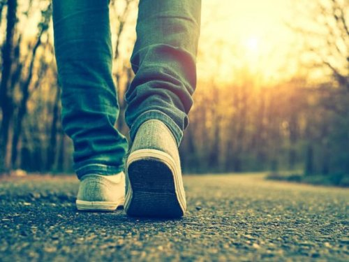 8 Words for Walking with Surprising Origins